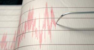 analisi sismiche case study spinips